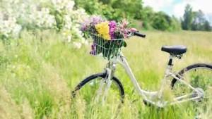 escursioni-in-bicicletta